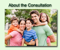 About the Consultation
